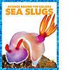 Cover: Sea Slugs