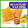 Cover: De la flor a la miel (From Flower to Honey)