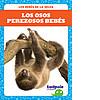 Cover: Los osos perezosos bebés (Sloth Babies)