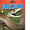 Cover: Black Mamba