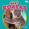 Cover: Baby Koalas