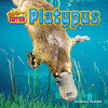 Cover: Platypus