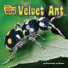 Cover: Velvet Ant