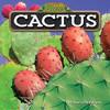 Cover: Cactus