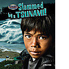 Cover: Slammed by a Tsunami!