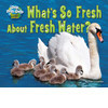 Cover: What's So Fresh About Fresh Water?