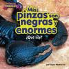 Cover: Mis pinzas son negras y enormes (scorpion)