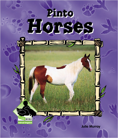 Cover: Pinto Horses