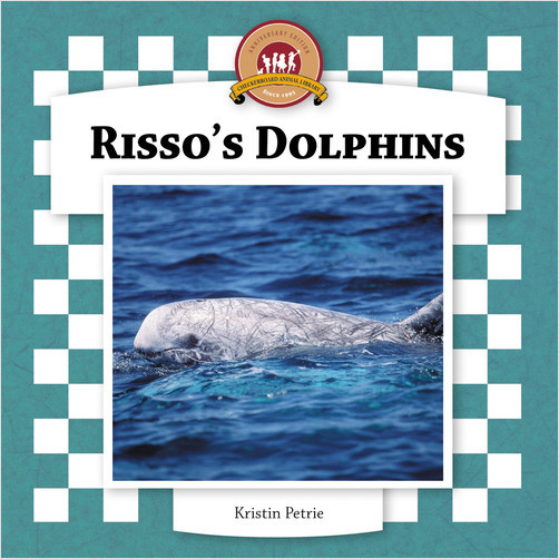 Cover: Risso's Dolphins