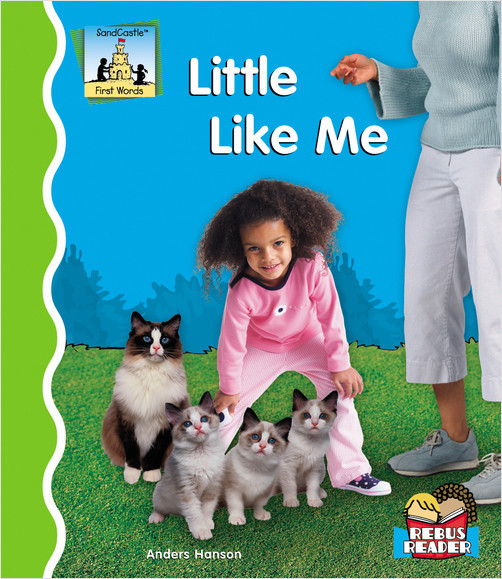 Cover: Little Like Me