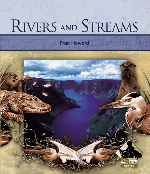 Cover: Rivers and Streams