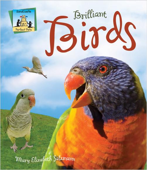 Cover: Brilliant Birds