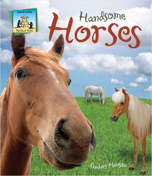 Cover: Handsome Horses