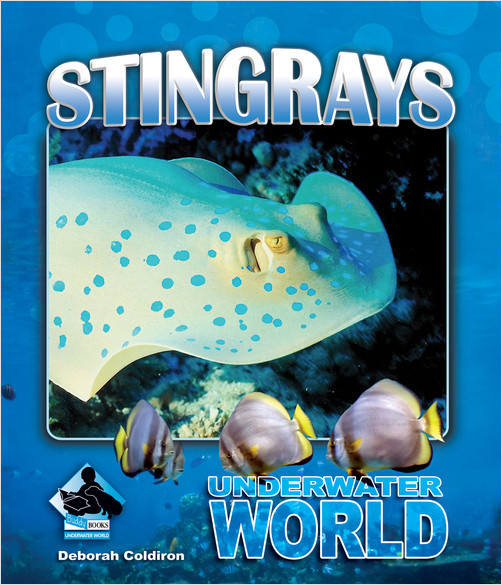 Cover: Stingrays