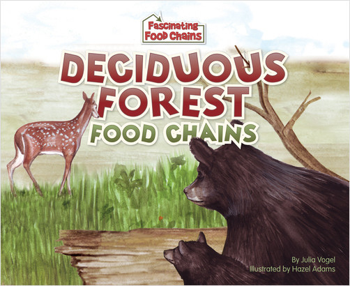 Cover: Deciduous Forest Food Chains