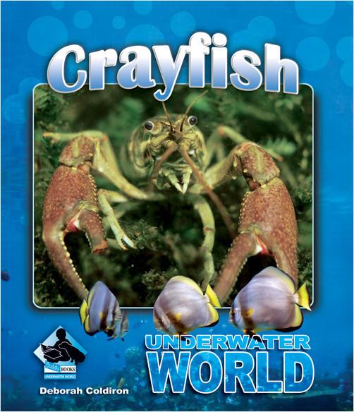 Cover: Crayfish