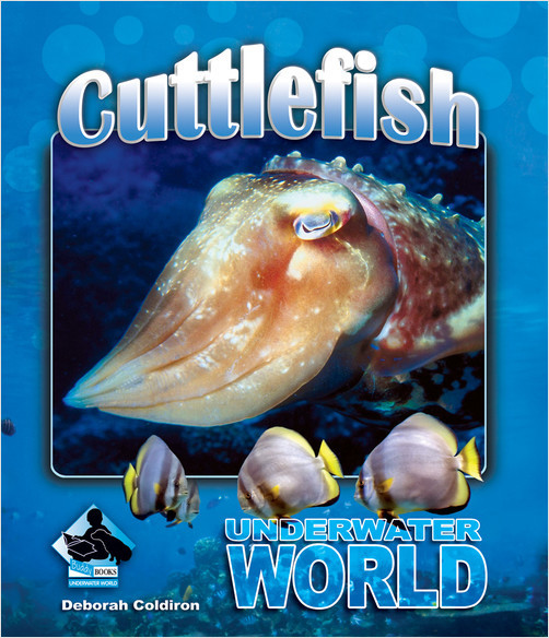 Cover: Cuttlefish