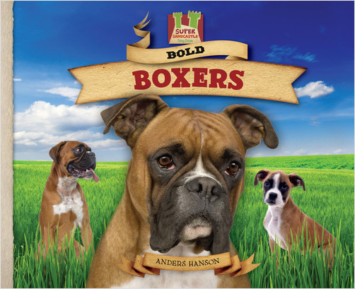 Cover: Bold Boxers