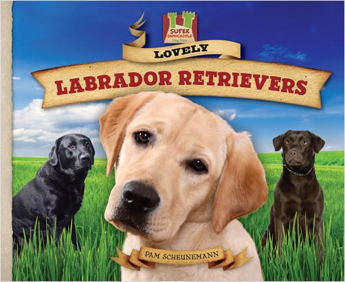 Cover: Lovely Labrador Retrievers