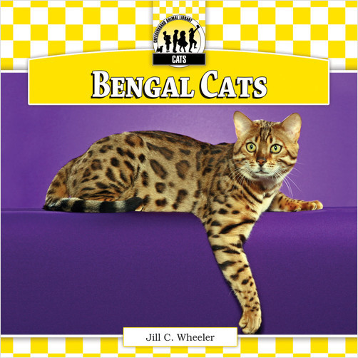 Cover: Bengal Cats