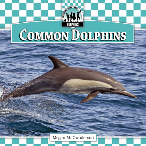 Cover: Common Dolphins