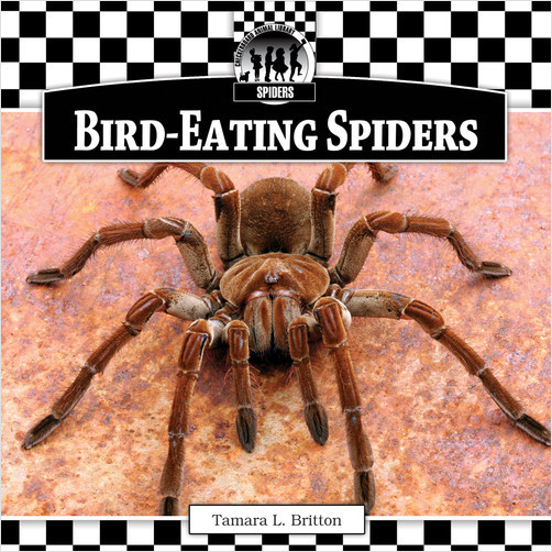 Cover: Bird-Eating Spiders