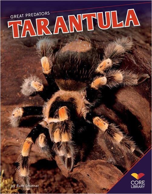Cover: Tarantula