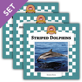 Cover: Dolphins Set 2
