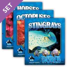 Cover: Underwater World Set 1