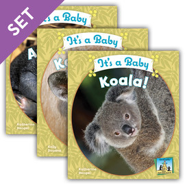 Cover: Baby Australian Animals