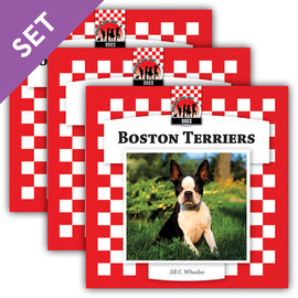 Cover: Dogs Set 8