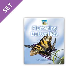 Cover: Bug Books