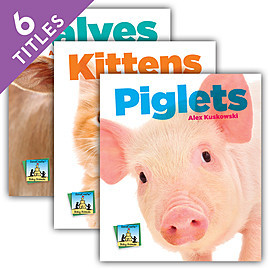 Cover: Baby Animals Set 1