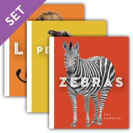 Cover: Zoo Animals