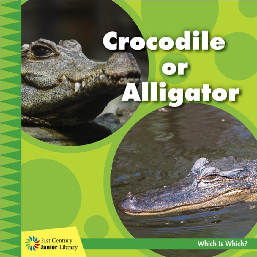 Cover: Crocodile or Alligator
