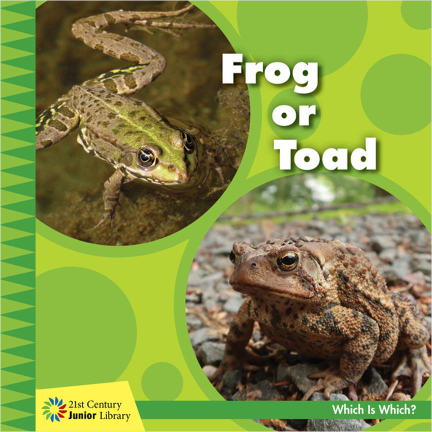 Cover: Frog or Toad