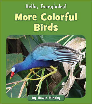 Cover: More Colorful Birds