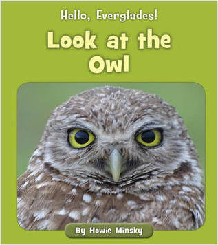 Cover: Look at the Owl