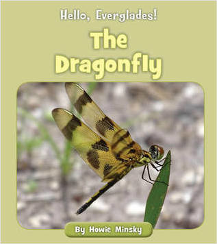 Cover: The Dragonfly