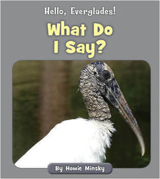 Cover: What Do I Say?