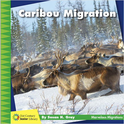 Cover: Caribou Migration