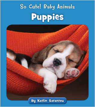 Cover: Puppies