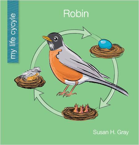 Cover: Robin