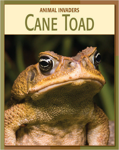 Cover: Cane Toad