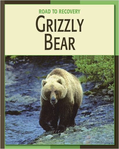 Cover: Grizzly Bear