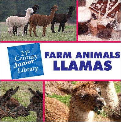Cover: Farm Animals: Llama