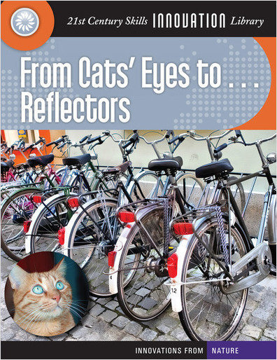 Cover: From Cats' Eyes to... Reflectors