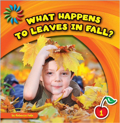 Cover: What Happens to Leaves in Fall?