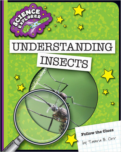 Cover: Understanding Insects
