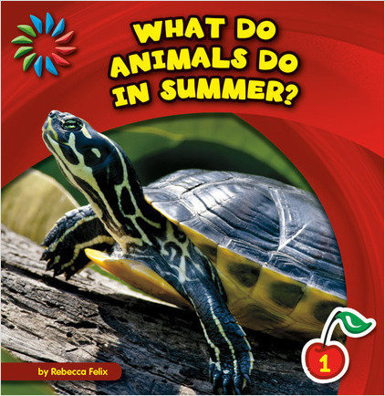 Cover: What Do Animals Do in Summer?